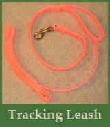 Tracking Leashes